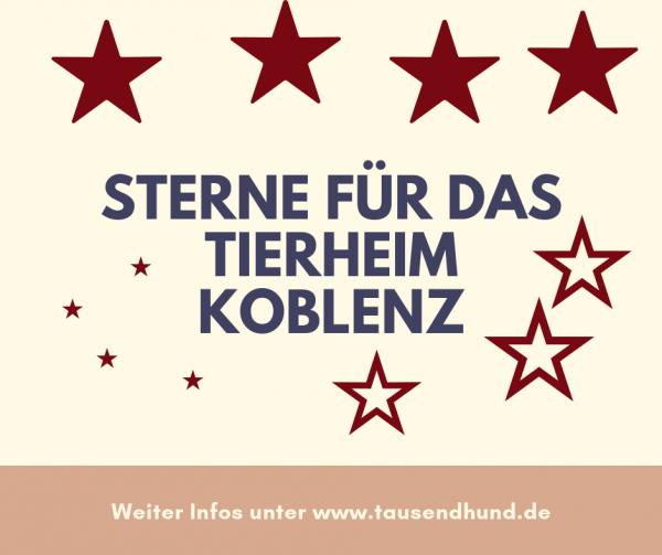 Sterne-f-r-das-Tierheim-Koblenz